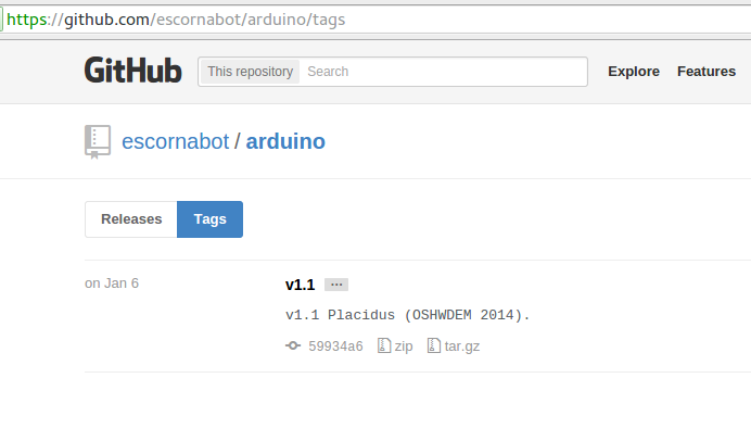 Version tags in Github